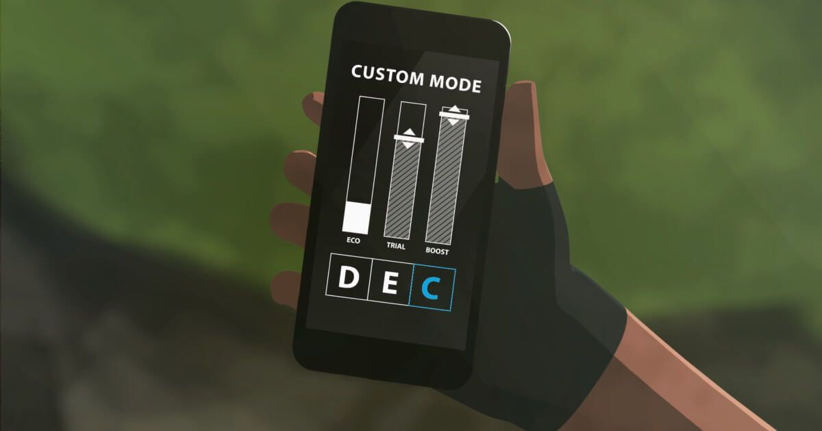 STEPS custom assist mode